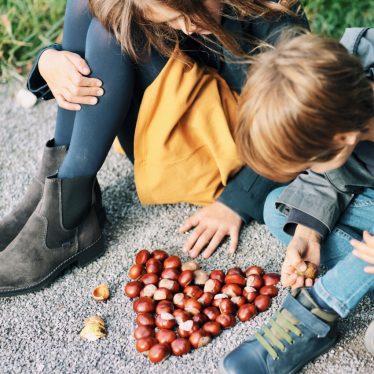 Unterwegs durch den Herbst: Suchen, Sammeln, Selbermachen