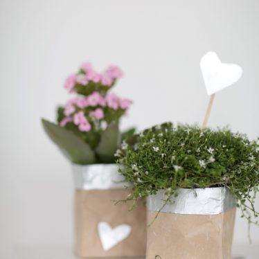 Dankeschön in der Milchtüte: ein DIY Geschenk für Lehrer und Erzieher